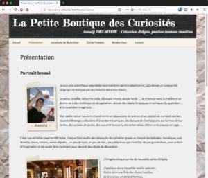 Capture d'écran du site http://danslalune.celeonet.fr